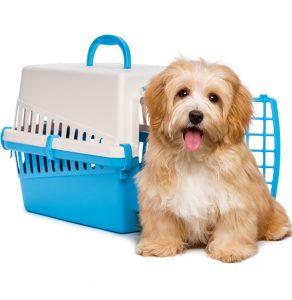 Enviar mascotas DEST