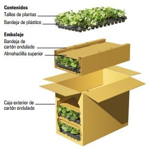 Embalaje de tallos y semillas